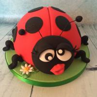 Ladybird - Birthday Cake